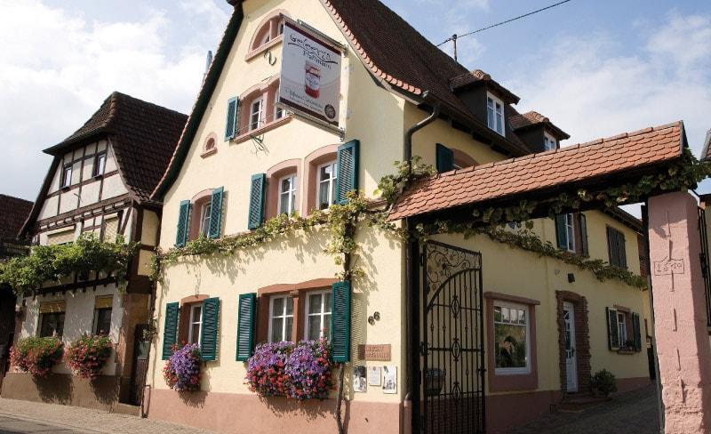 Weinhof Pfaffmann in Landau Pfalz Südliche Weinstraße